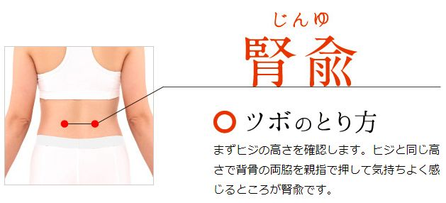 「腎兪」の画像検索結果